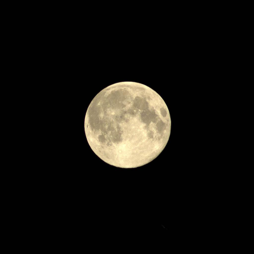 titel-moon